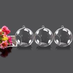 3pc Globe Ball Glass Hanging Air Plant Terrarium Flower Vase