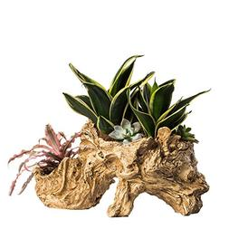 NCYP Artificial Twisted Driftwood Planter Resin Tree Toot Fl