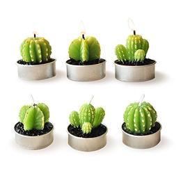 E-dance 6 Pcs Decorative Cactus Candles Mini Cute Tealight C