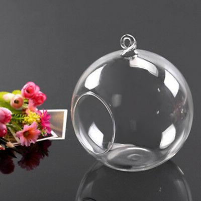 12pc Clear Hanging Vase Container Holder