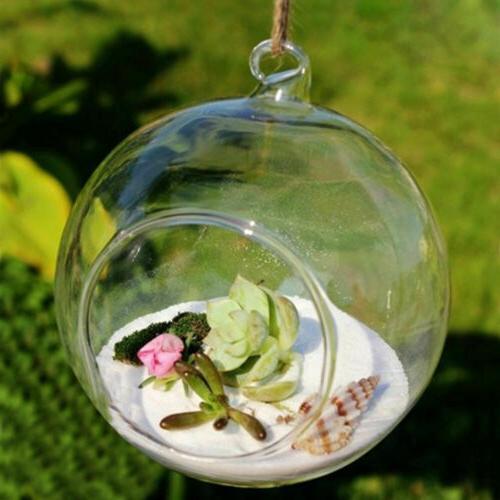 2pcs Vase Clear Terrarium Glass