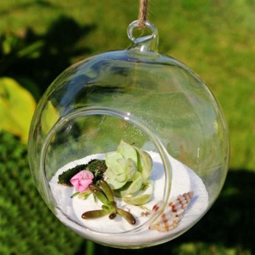 6pcs Clear Globe Candle Tea Light Holder Plant Terrarium