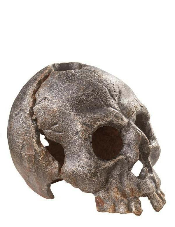 co cast iron halloween skull macbeth candle