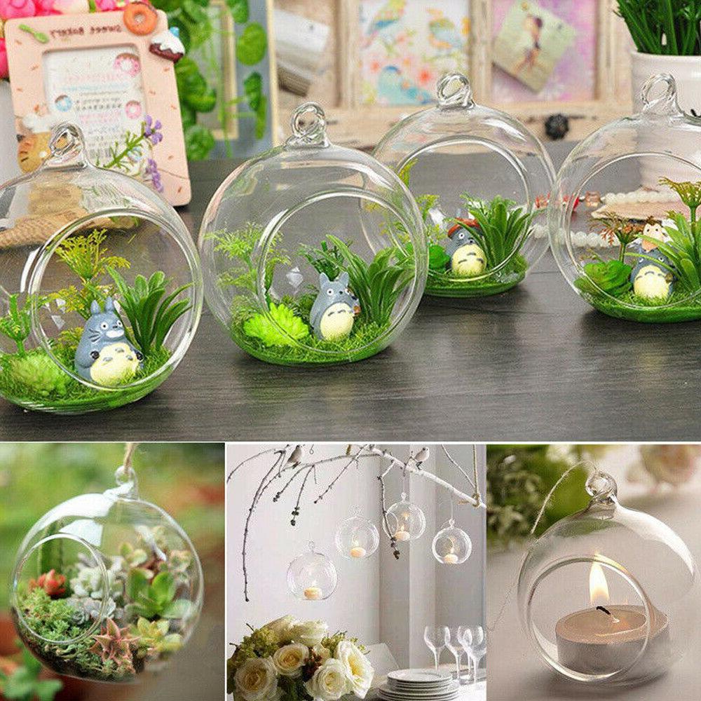 Set of 12 Globe Vase Glass Plant Candle