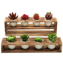 rustic burnt wood tiered succulent